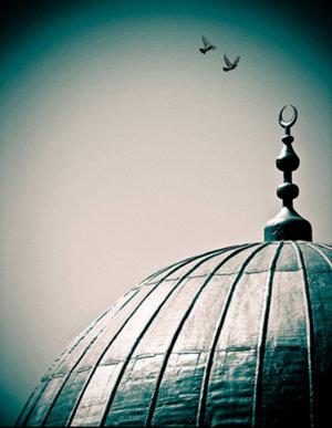islam-peace