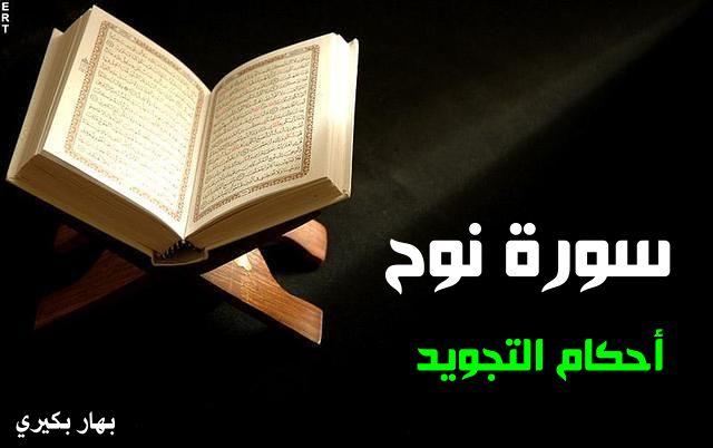 quran_Photo_image4arab (17)