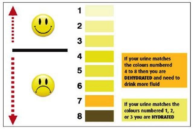 Pee-Chart