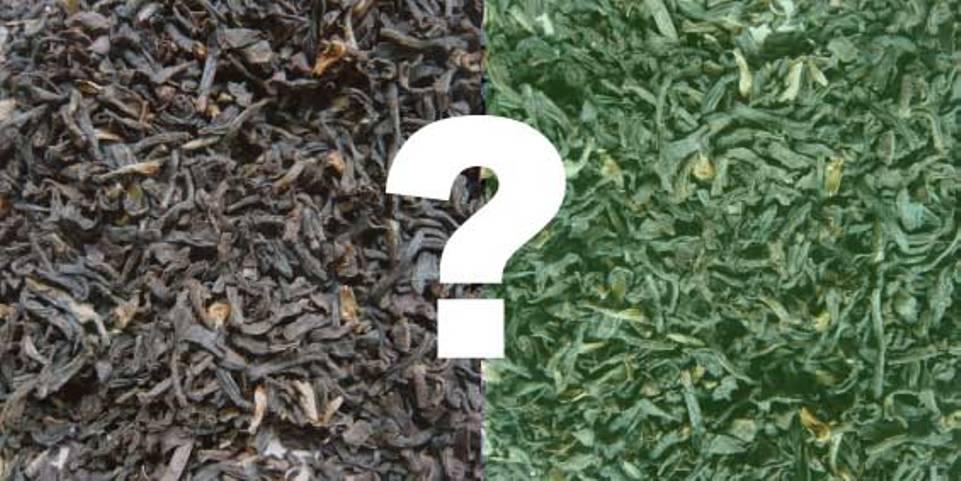 green-balck-tea1