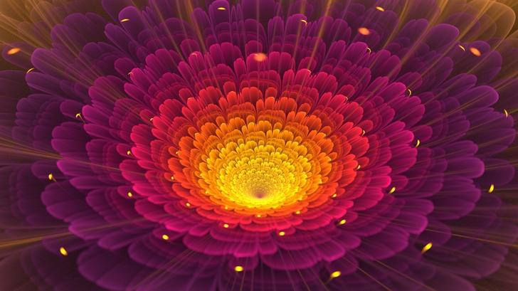 light abstract nature flowers digital art macro 1920x1080 wallpaper_www.wallpaperfo.com_7